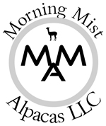 morning mist logo